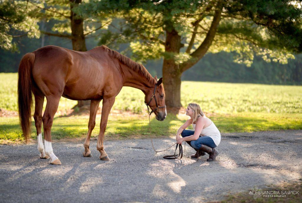 Horse Photography NY